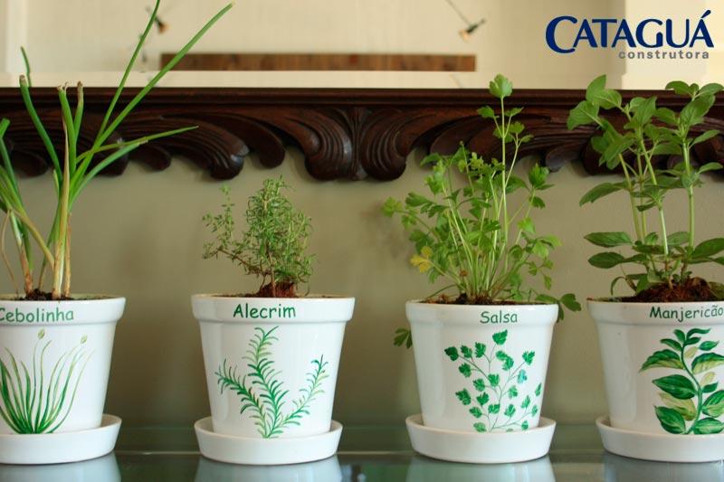 5 passos para ter uma horta dentro de casa