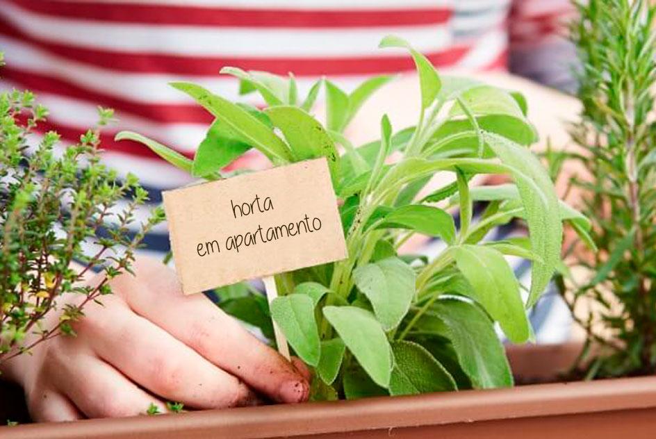 Ideias práticas para montar horta em apartamento